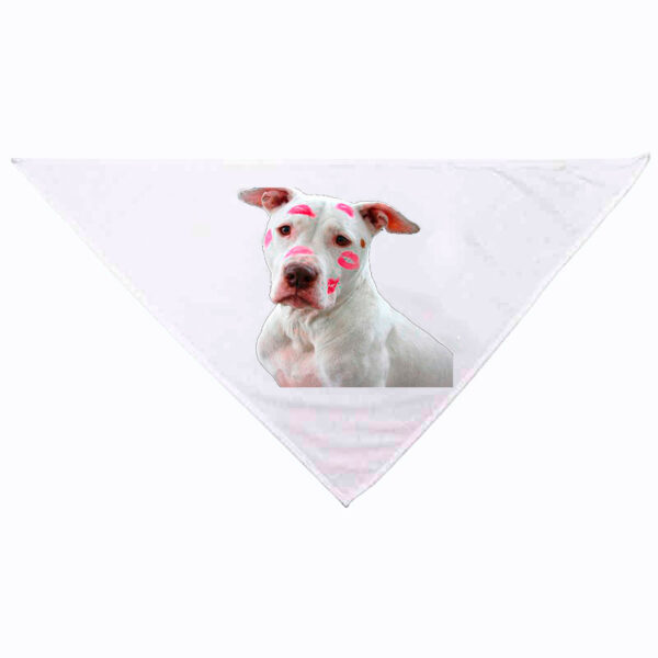 Bandana personnalisée pour chien